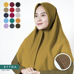 ETTRA detail